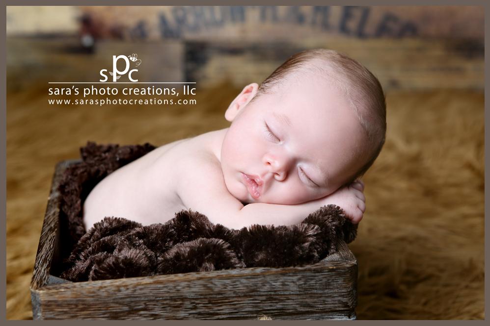 Norman ok newborn s photographer